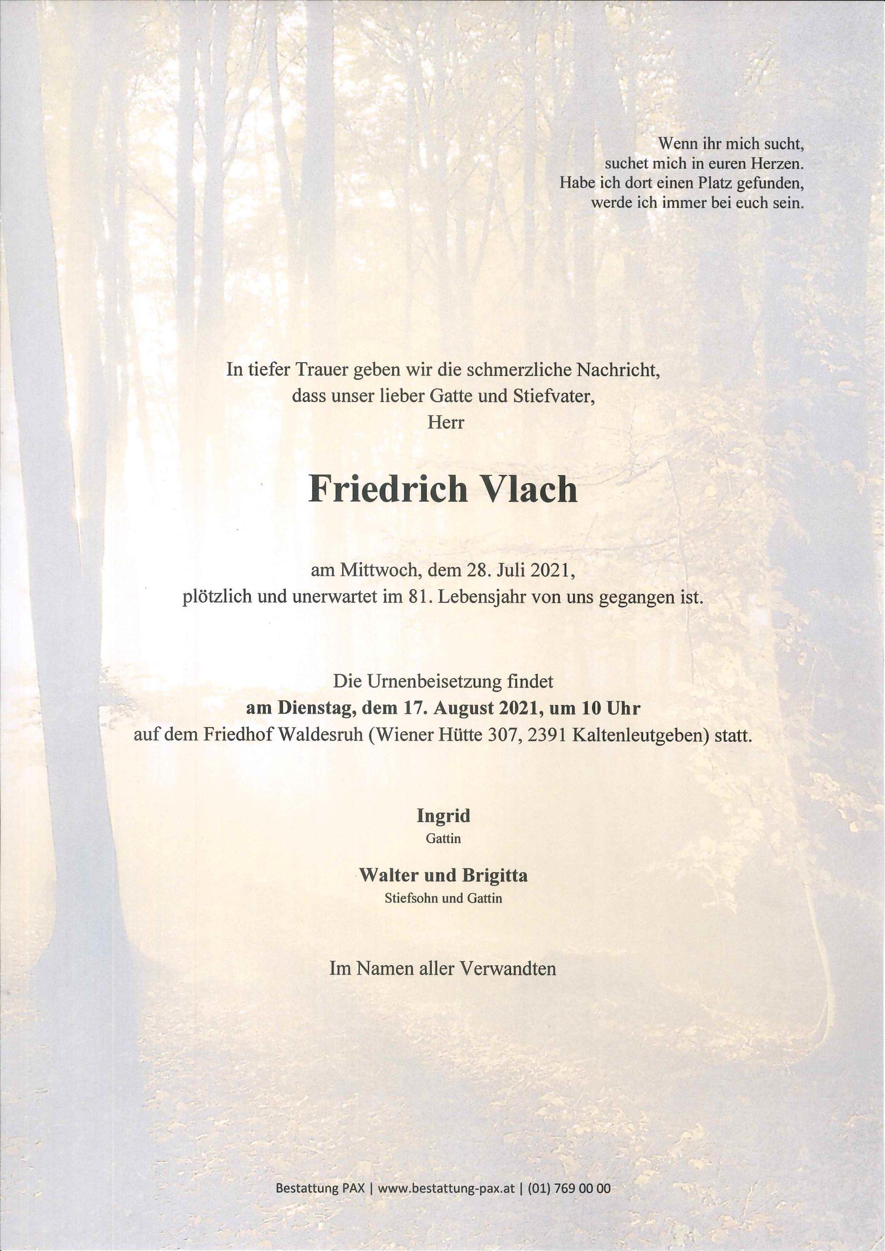 Friedrich Vlach